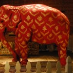 Elephant in the Room Metaphor photo at P5 Group